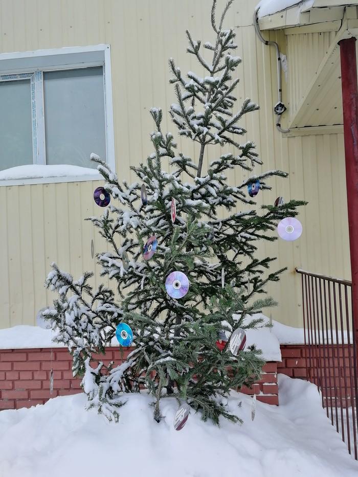 Во дворе кто-то нарядил ёлку Новый Год, Ёлка, Диски