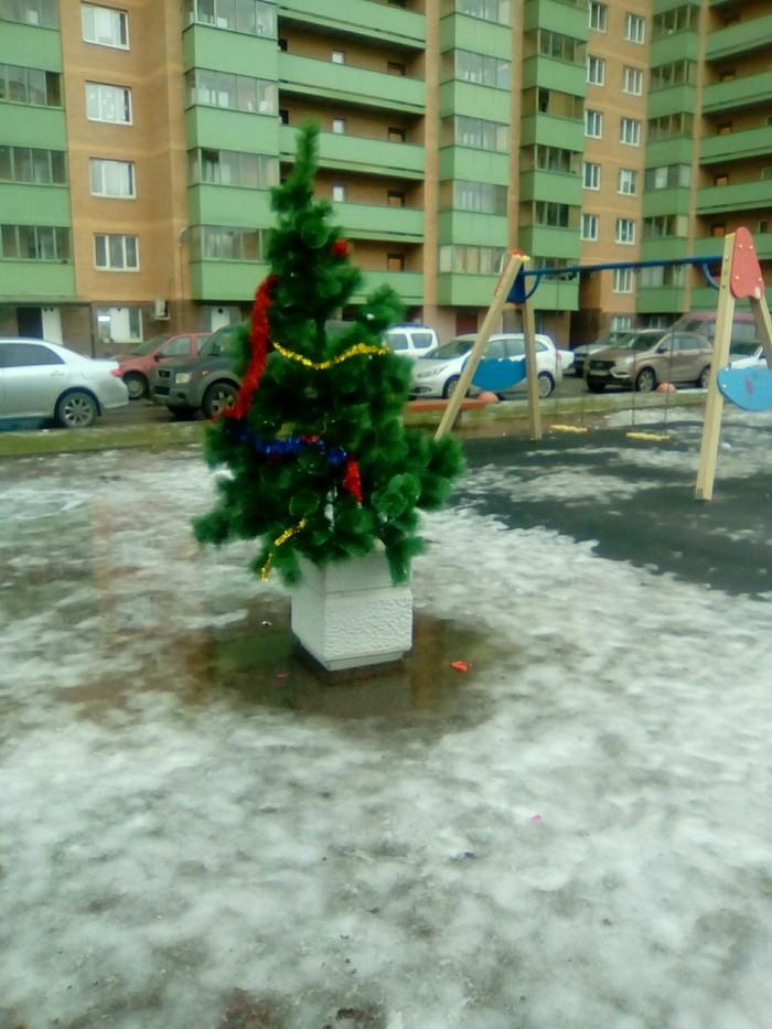 Тут было много постов на тему елок Ёлка, Санкт-Петербург, Новогоднее чудо, Фотография