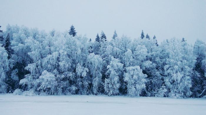 Северная Карелия, п.Чупа Северная Карелия, -25, Белое море