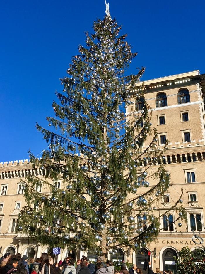 48 000 € стоила эта ёлочка Новый год, Жаль, Большое дерево