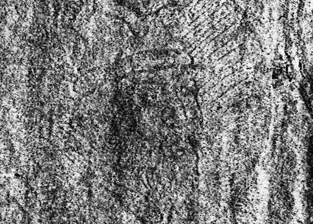 Мумии и скелеты. 17. Тайны русской истории. иван грозный, история, отравление, реконструкция, длиннопост