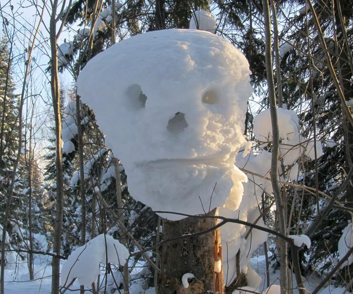 Лесные монстры. Зима, Зимний лес, Дети, Снежная шапка, Фотография