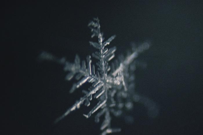 Природа-художник.Снежинки в макро. Фотография, Снежинка, Макро, Nikon, Lomo, Canon, Зима, Длиннопост