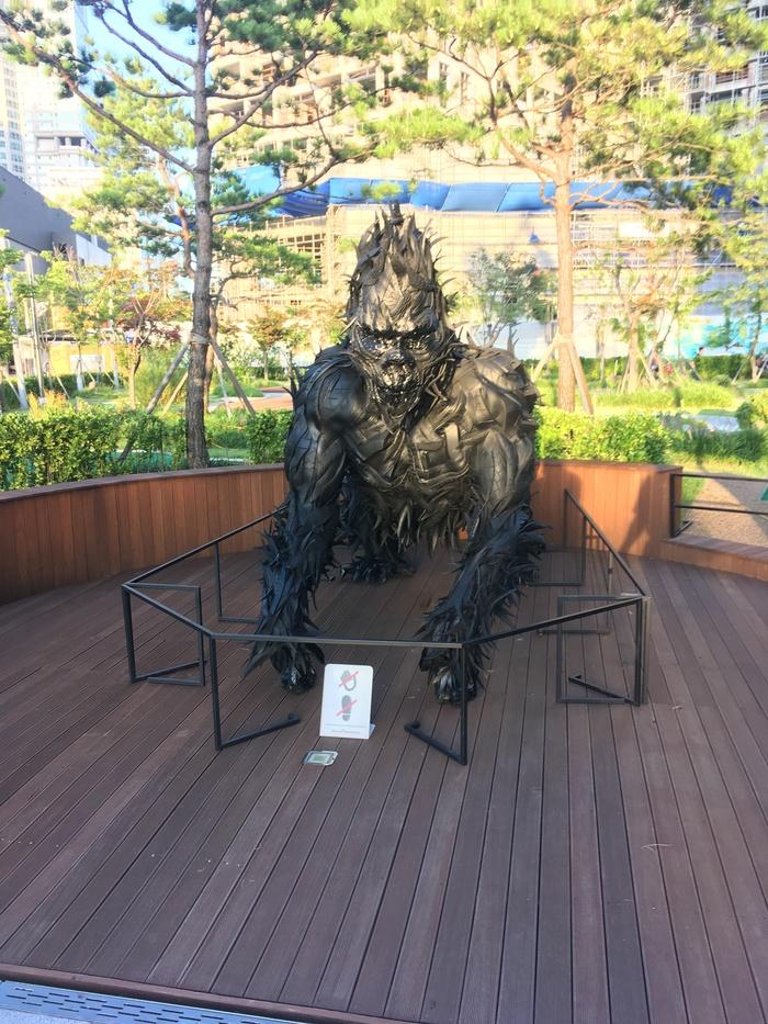 Южная Корея Шины, Улица