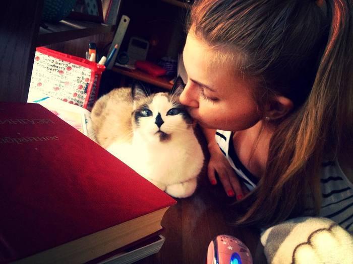 Очень милая кошка Кот, Пятно, Девушки, Окрас, Животные