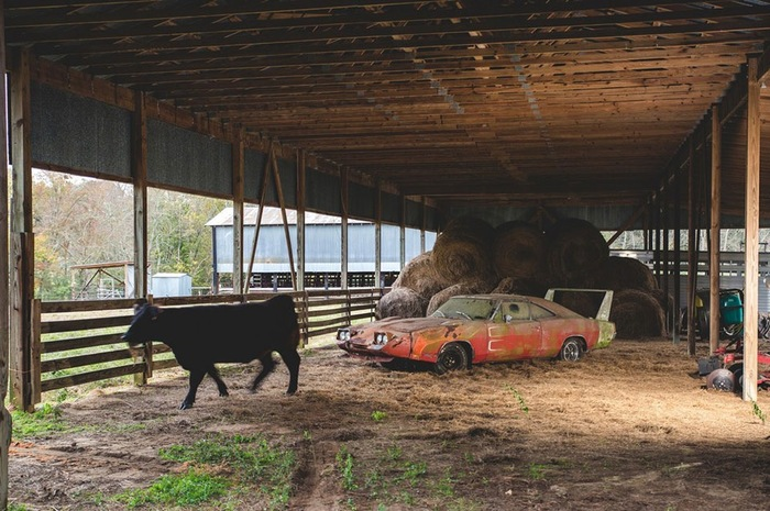 Барн-файнд или забытое сокровище Dodge Daytona 1969 года Barnfind, Plymouth, Dodge, 1970 Dodge Charger RT Daytona, Раритет, Восстановление, Длиннопост