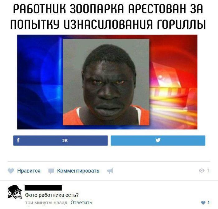 Работник зоопарка арестован за попытку изнасилования гориллы.