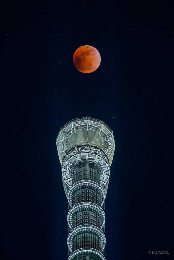 """""""Красная Луна"""" над SkyTree в Токио Луна, Токио, Токио Скайтри, Skytree, Длиннопост, Twitter"""