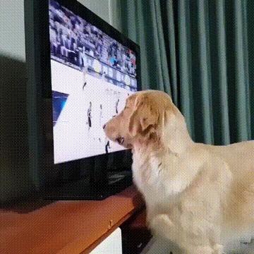 Баскетбол - это жизнь)