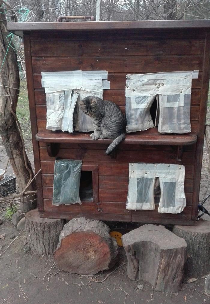 Домик для котиков Кошкин дом, Кот, Добрые люди, Добрые дела