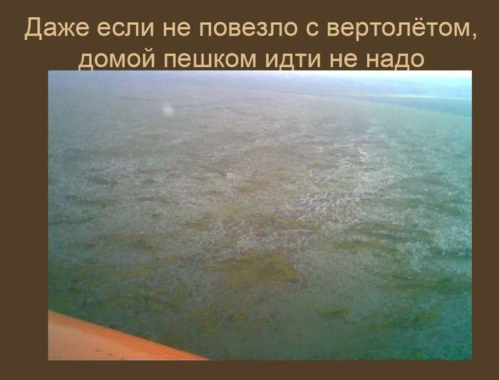 Таежно-офисное творчество II нефть, тайлаковское месторождение, ХМАО, югра, видео, длиннопост