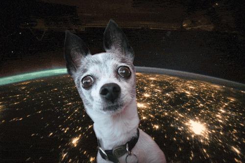 Мысли вслух Илон Маск, Тесла, Космос, Запуск ракеты, Гифка