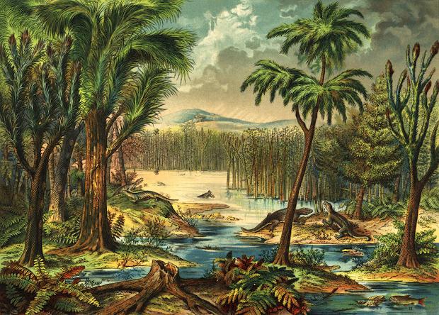 Гибель дождевых лесов пробудила у четвероногих тягу к путешествиям Палеонтология, Палеоновости, Наука, Палеозой, Длиннопост, Копипаста