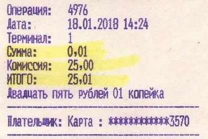 Россиянин заплатил налог с комиссией в 250 000 процентов. Налоги, Налоговая инспекция, Обман, Копейка, 2500