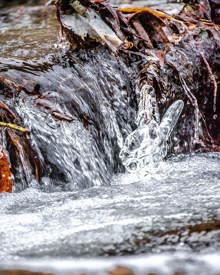 Природная Victory Сибирь, Столб, Природа, Начинающий фотограф, Осень, Моё, Ручей, Nikon d3100