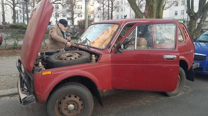 avto-zhuk-s-pizdoy-burdi