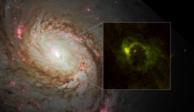 Астрономы засняли газопылевое кольцо вокруг черной дыры