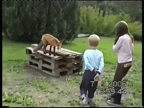 - Отойди от детей!