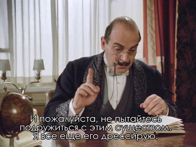 https://cs8.pikabu.ru/post_img/2018/02/17/8/1518873057124773756.jpg