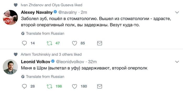 Обеспечивая явку Политика, Алексей Навальный, Выборы 2018, Twitter