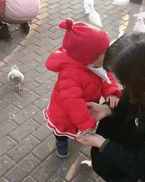 Ты чё, птица, офонарела? Это моё!