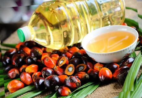 В Беларуси впервые протестировали пальмовое масло на человеке Agronews, Беларусь, Человек, Пальмовое масло, Студенты, Новости, Эксперимент, Еда