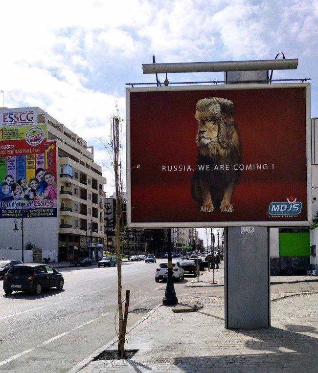 """""""Россия, мы едем"""" © Марокканский лев в шапке ушанке Спорт, Футбол, ЧМ 2018, Билборд, Марокко"""