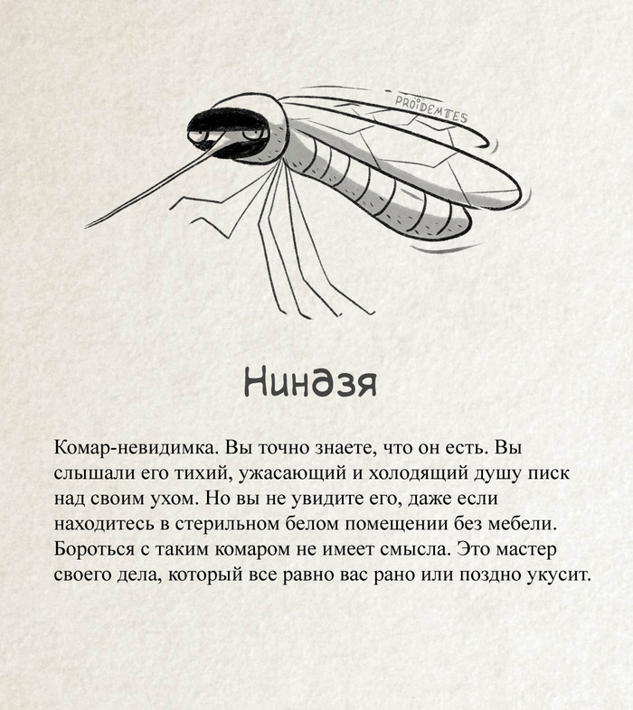 Классификация комаров proidemtes, комары, юмор, длиннопост, Насекомые