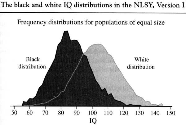 Расы и коэффициент интеллекта (IQ). Исследование школьника в Калифорнии. Расы, Интеллект, Толерантность, США