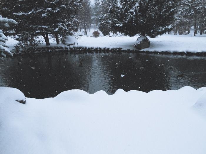 Весна наступила! Фотография, Пейзаж, Природа, Зима, Снег, Длиннопост