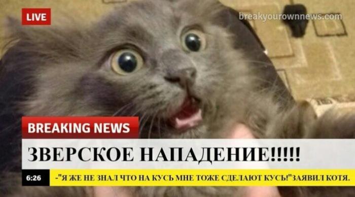 Срочная новость!