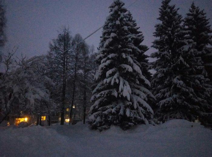 Зима. Фотография, Зима, Снег