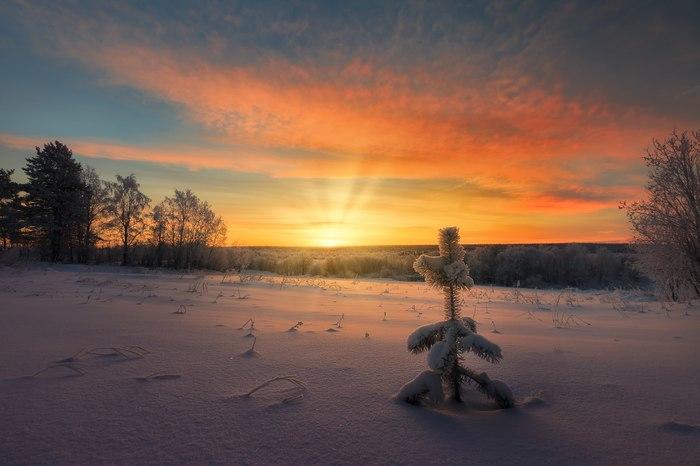 Мурманская область Россия, Фотография, Природа, Пейзаж, Снег, Мороз, Мороз и солнце, Длиннопост
