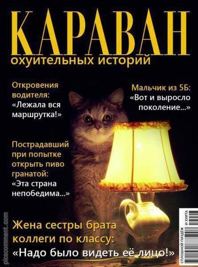 Пикабу, пожалуйста, будь самокритичней Кот с лампой, Реальная история из жизни, Ложь, Обман, Критичность, Кармадрочерство, Редактируйте теги, Текст, Длиннопост