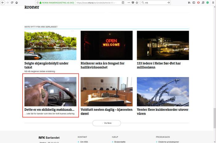 Дамы и господа, представляю вам главный новостной сайт Норвегии