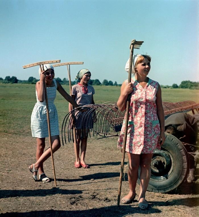 1970г. Сенокос в Рязанской области.