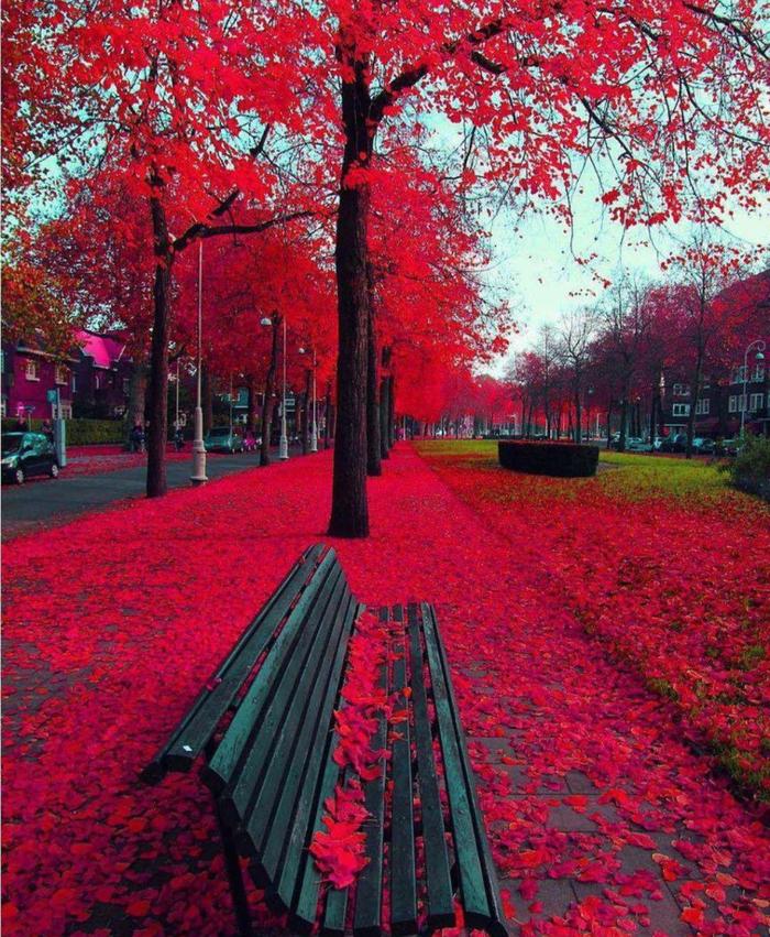 Красный фильтр