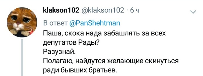 Паша в теме Украина, Политика, Вольнов, Павел шехтман, Twitter, Стеб, СУГС, Скриншот