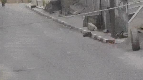 Израильские военные против шины.