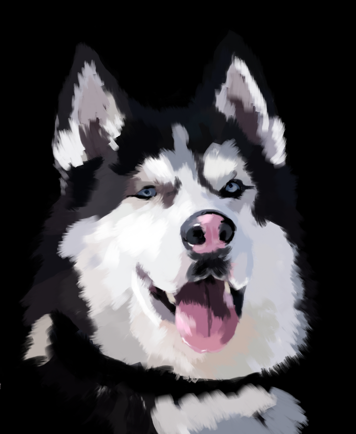 PAINt 4 Paint, Портрет, Арт, Собака