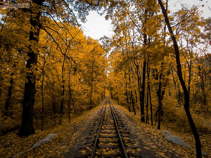 Сквозь осень Осень, Железная дорога, Рельсы, Транспорт, Железнодорожный транспорт, Фотография