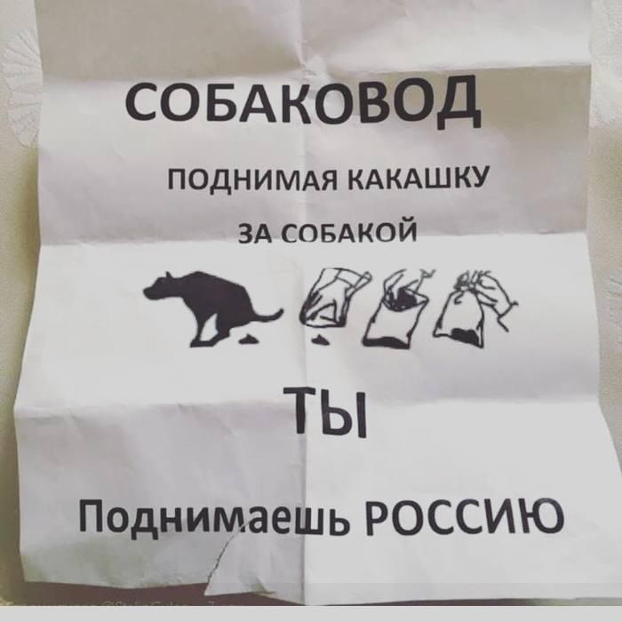 Двусмысленно, весьма. Собака, Фекалии, Россия, Объявление, Юмор, Черный юмор, Двусмысленность, Собачники