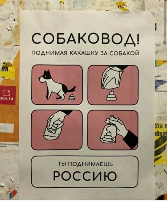 Убирайте за своей собакой!
