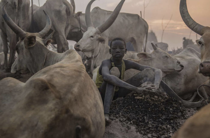Самобытное племя Динка из Южного Судана Племя, Южный Судан, Фотография, Длиннопост