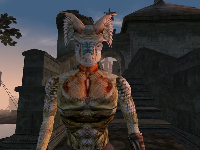 Нужна помощь со сторонним квестом в Морровинде The Elder Scrolls, Tes III morrowind, Morrowind, Помощь, Баг