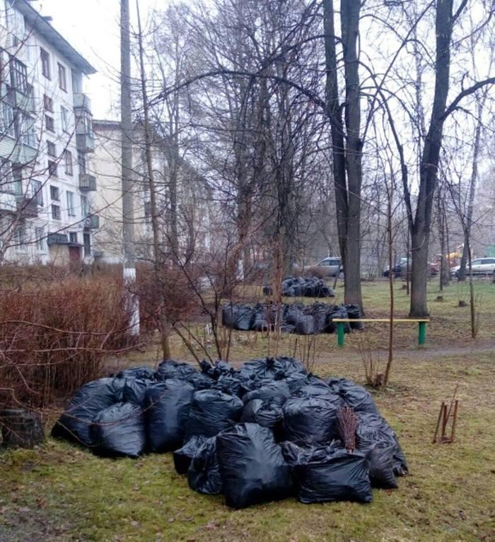 Сами убрали, сами вывозите Такие дела, Балашиха, Субботник, Мусор, Вывоз мусора