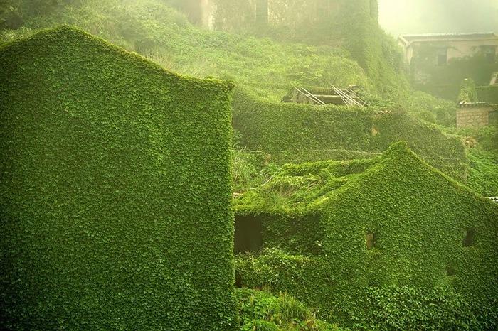 Деревня, проигравшая схватку с природой Китай, Хоббит, Фотография, Необычное, Лучшее, Растения, Красота, Длиннопост