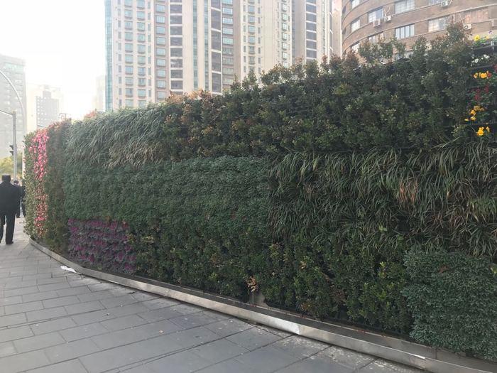 Маскировка строительного забора в Китае. Китай, Шанхай, Строительство, Забор