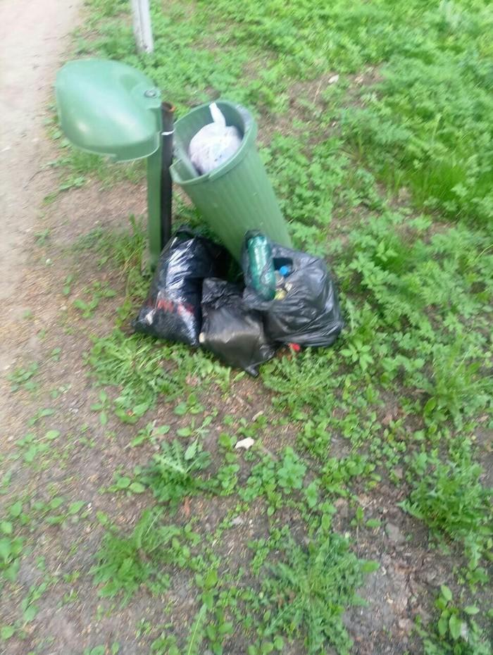 Продолжение уборки береговой линии.Поселок Архангельское Лига чистомена, Любовь к природе, Длиннопост