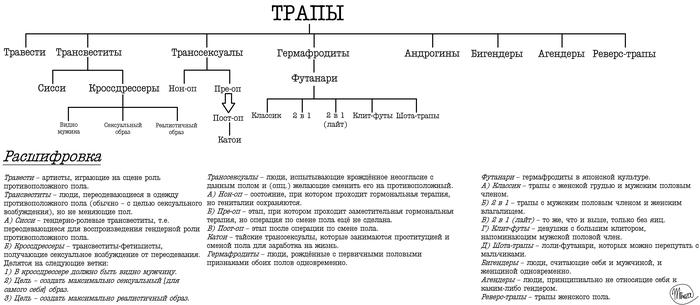 Трапосхема Its a trap!, Луркморье, Классификация, Схема